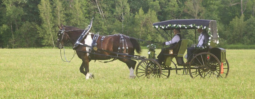 Black Horse Drawn Limousine Carriage